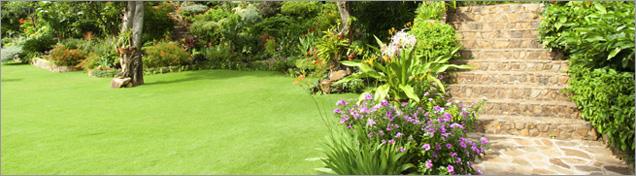 L 39 actualit du jardin conseils et d corations tendances for Conseil plantation jardin