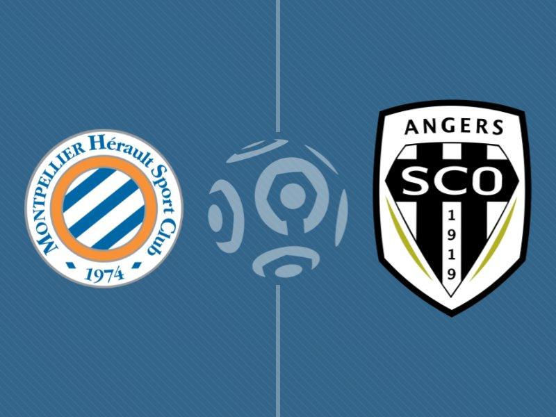 Montpellier et Angers se neutralisent